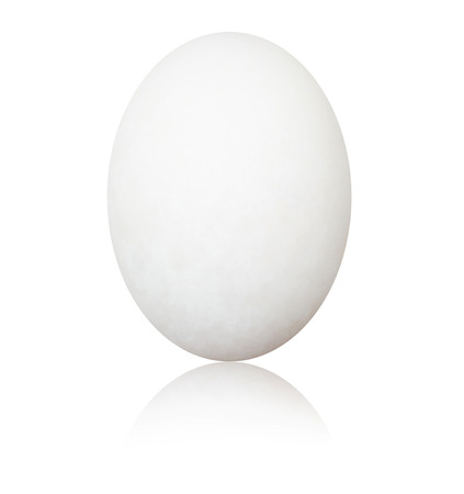 White egg  isolated on white background