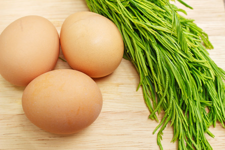 pennata: egg and acacia pennata ingredient for cooking, Thai cuisine, calls that cha-om omelet