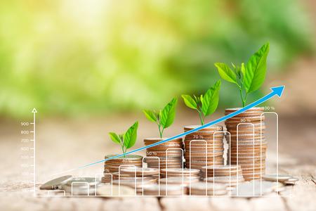 Stapel munten en groeiende grafiek voor bedrijfsfinanciënconcept