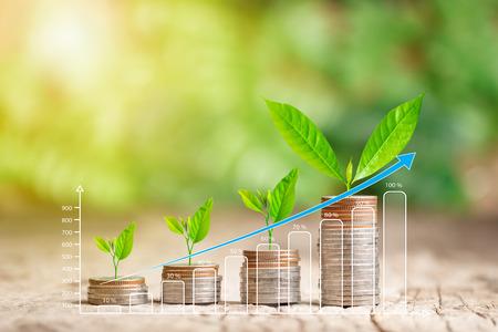 Baum wächst auf Münzstapel und wachsender Graph zum Sparen von Geld und Geschäftsfinanzierungskonzept