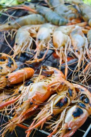 shrimp grilled photo