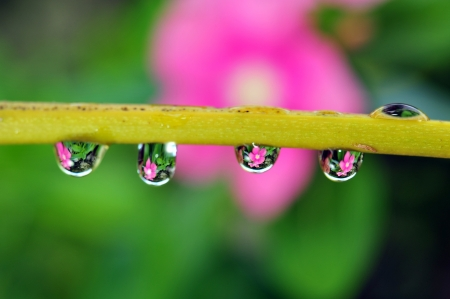 dot water Stock Photo