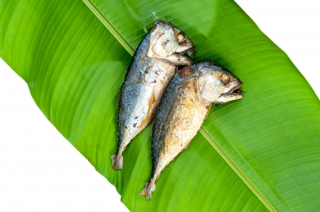 fried Mackerels with green leaf  photo
