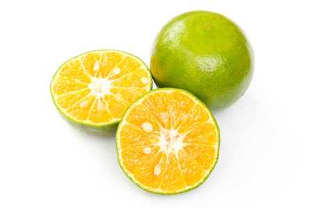Asia orange, Citrus tangerina Stock Photo - 16041849