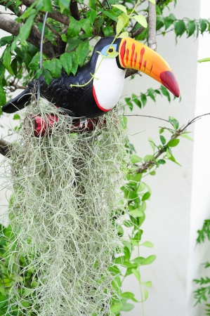 hornbin ceramic with Spanish Moss creeper in garden Stock Photo - 16461545