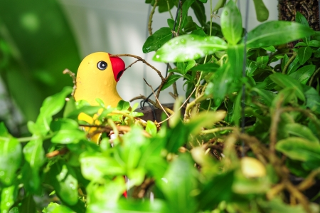 colorful parrot ceramics decorated in garden Stock Photo - 16623638