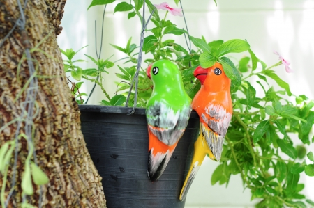 colorful parrot ceramics decorated in garden Stock Photo - 16623637