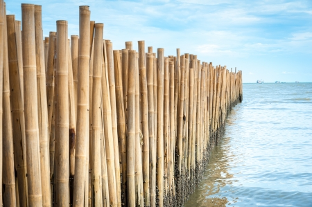 Bamboo barrier for protect the beach, phuket Thailand