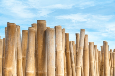 Bamboo barrier for protect the beach, phuket Thailand Stock Photo - 16858660