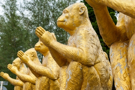 Monkey statue at mangrove forest, phuket Thailand Stock Photo - 16974557