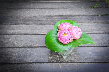 pink lotus in glass vase on wooden plank Stock Photo - 17240125