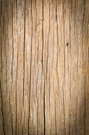 Old grunge Wood Texture photo