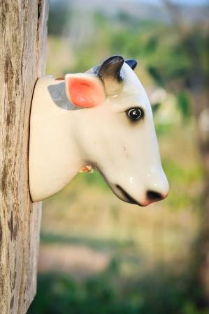 bull head ceramic decorate in garden Stock Photo - 17307242