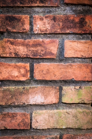 clay brick wall Stock Photo - 17756840