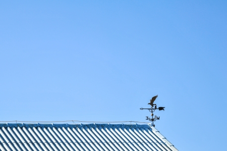 forcast: Weather Vane on top Roof in Clear Blue Sky