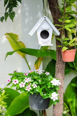 Wooden bird house hanging on tree  Stock Photo