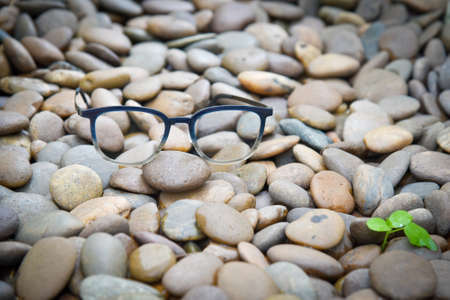 Clear eyeglasses, Glasses transparent dark blue frame Vintage style on pebbles with small plant