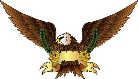 eagle shield: Fury spread winged eagle