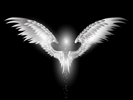 dark angel: angel wings on dark background