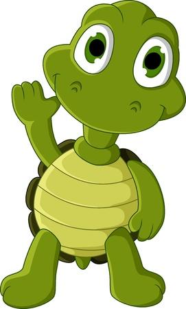 tortoise: cute green turtle cartoon Illustration