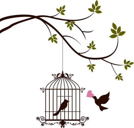 black bird: bird are bringing love to the bird in the cage