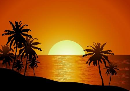 Coucher de soleil vue sur la plage avec palmiers