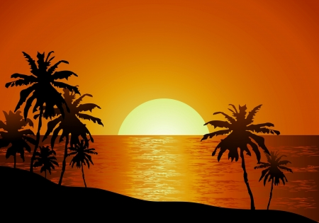 Sunset view in beach with palm tree