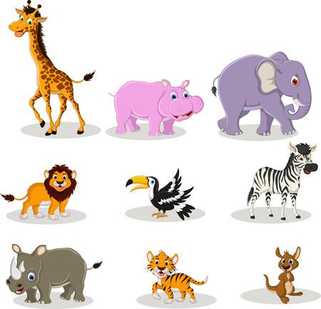 mandrill: raccolta degli animali cartone animato della fauna selvatica