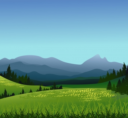 valley: beauty landscape with pine forest and mountain background Illustration