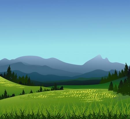coniferous forest: la belleza del paisaje con bosques de pinos y las montañas de fondo Vectores