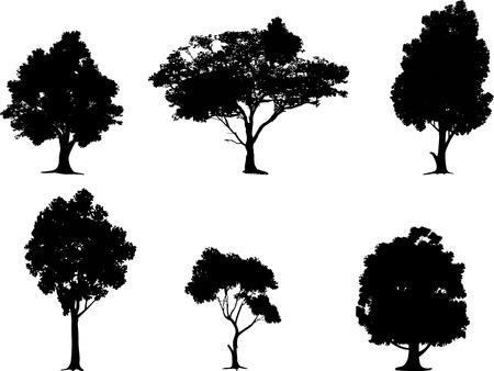 sauce: colección de la silueta del árbol Vectores