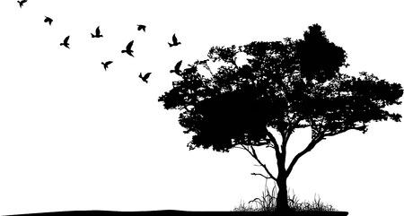 boom silhouet met vogels vliegen Stock Illustratie