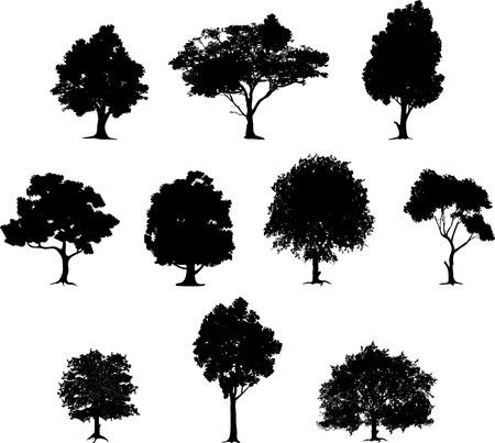 raccolta di silhouette albero Vettoriali