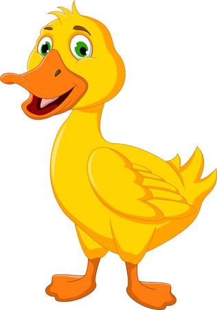 pato caricatura: dibujos animados del pato divertido que se presenta Vectores