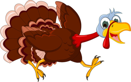 funny turkey: funny turkey cartoon running