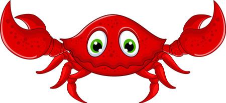 cartoon crab for you design Vector
