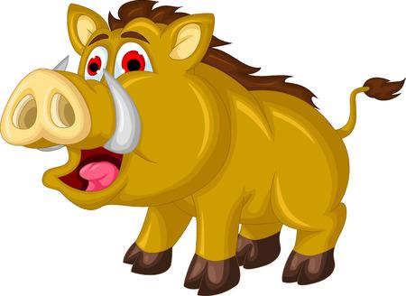 wildschwein: Wildschwein Karikatur Illustration