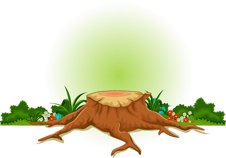 root: root of tree cartoon