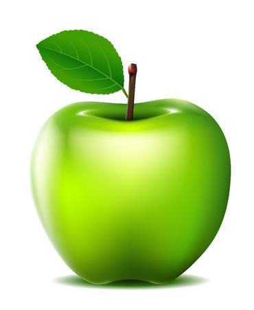 green apple vector for you design