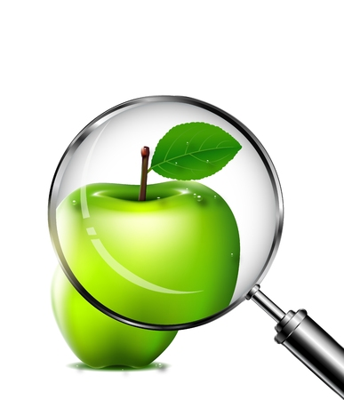 reviewing an green apple with a magnifying glass Vector