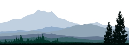 tranquil scene on urban scene: silhouette of coniferous forests for you design