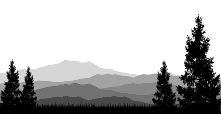 tranquil scene on urban scene: coniferous forests for you design Illustration