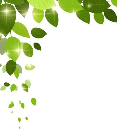 arbol de pascua: fondo verde natural con las hojas de la hoja de otoño