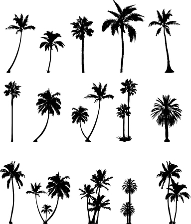 landscaped garden: various vector trees silhouettes for you design