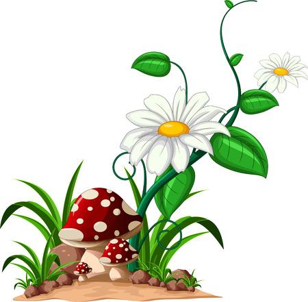 illustraiton: mushrooms in the garden Illustration