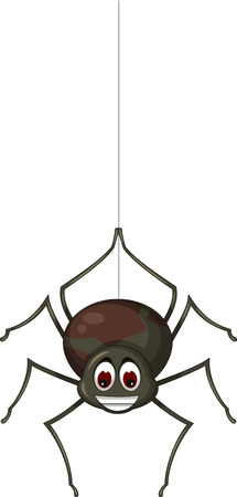 poisonous insect: spider cartoon for you design