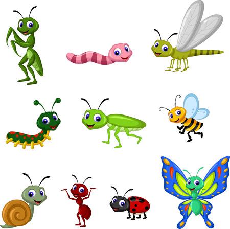 escarabajo: colección de insectos de dibujos animados