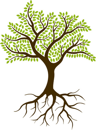 나무 실루엣 스톡 콘텐츠 - 37084545