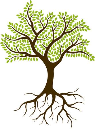 arbol con raices: silueta del árbol