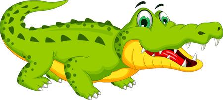 crocodile: Cartoon crocodile posing